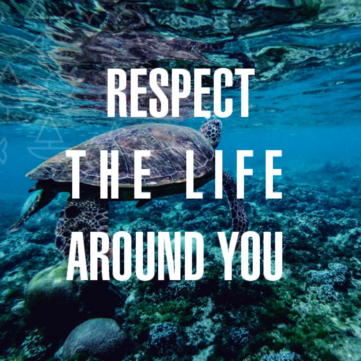 Image 0502: Earth Day tip respect the life around you